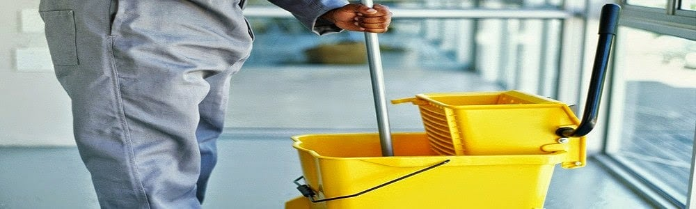 Professional Cleaning Business