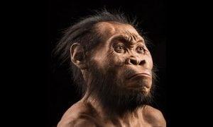 New Human Specie