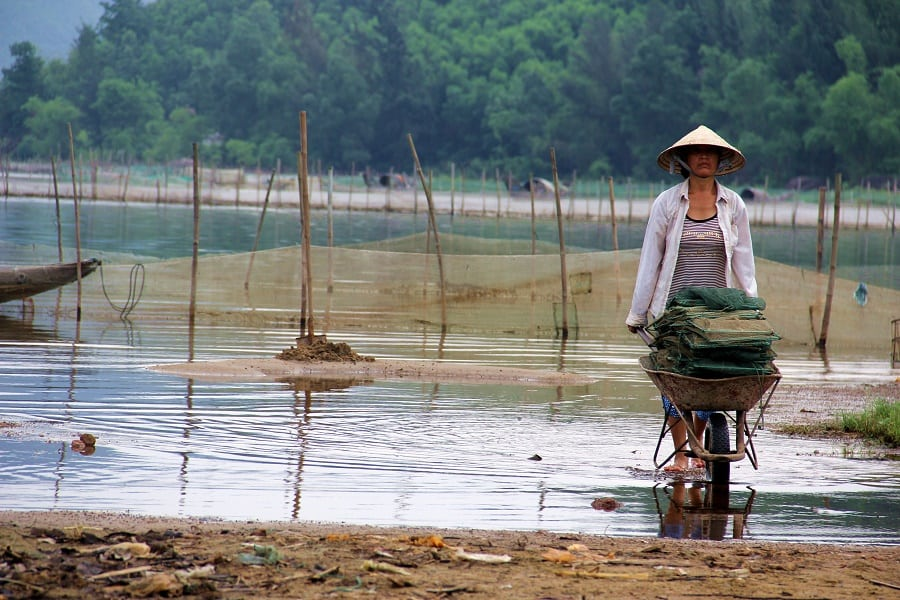 The impact of sad realities as because of climate change in Vietnam|Photo credit: uqinvietnam.com