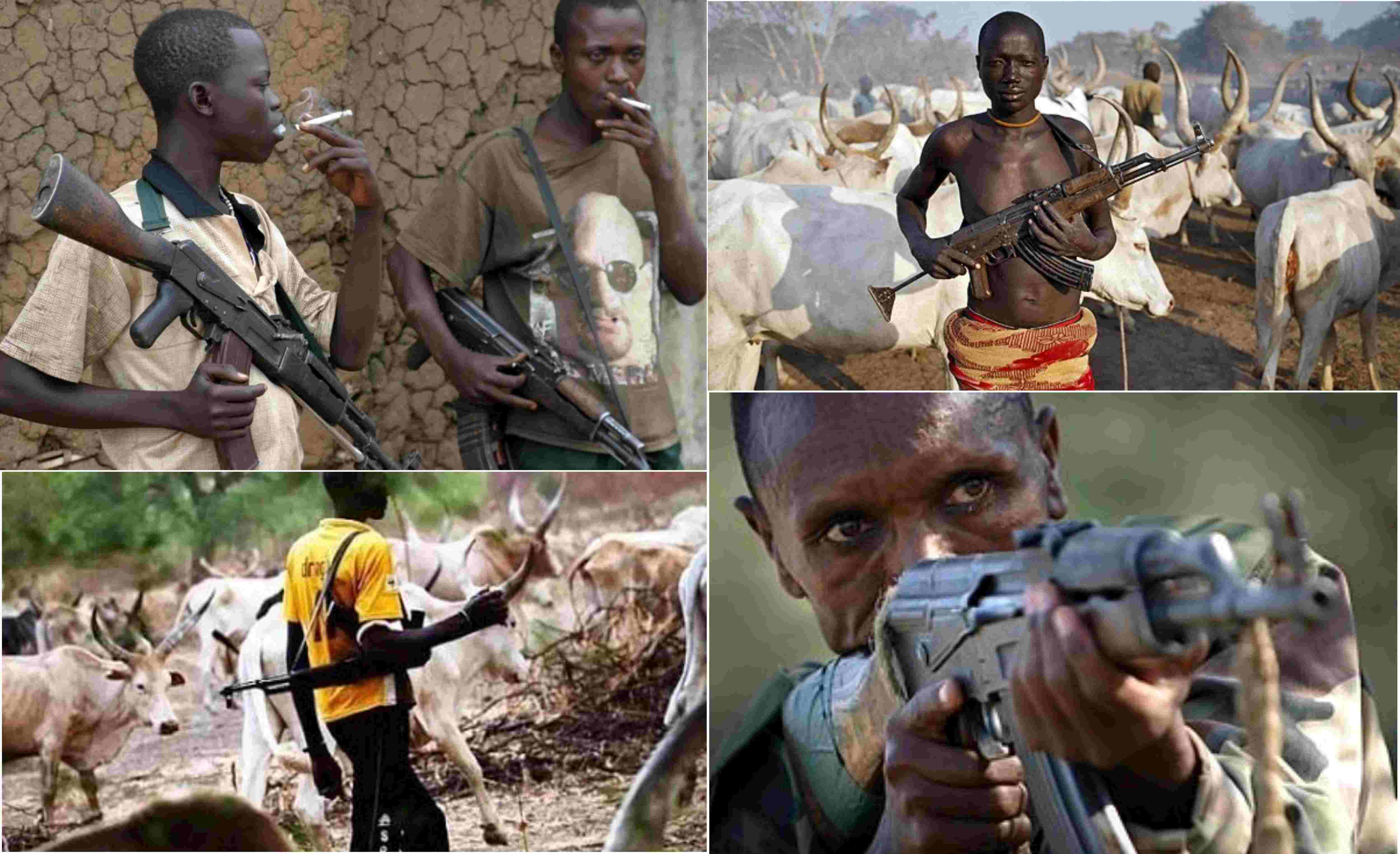 Fulani Herdsmen Armed With AK-47