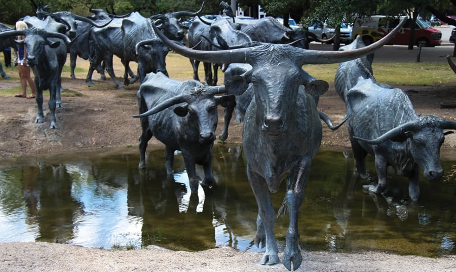 cattle drive sculpture dallas