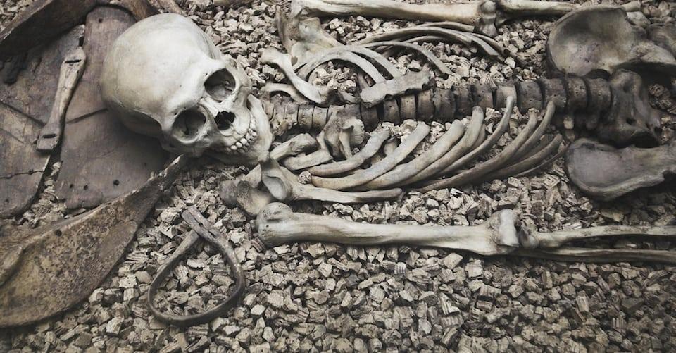 Corpse Grinder