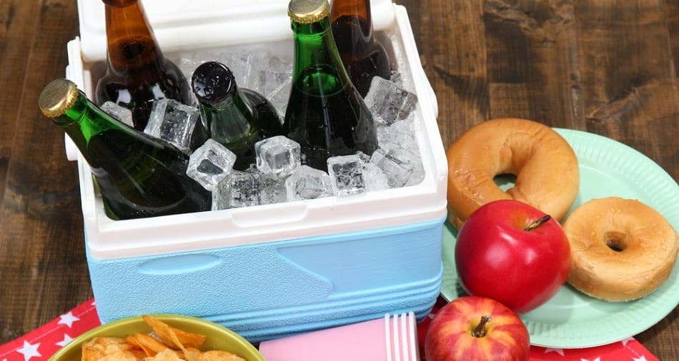 cooler for outings