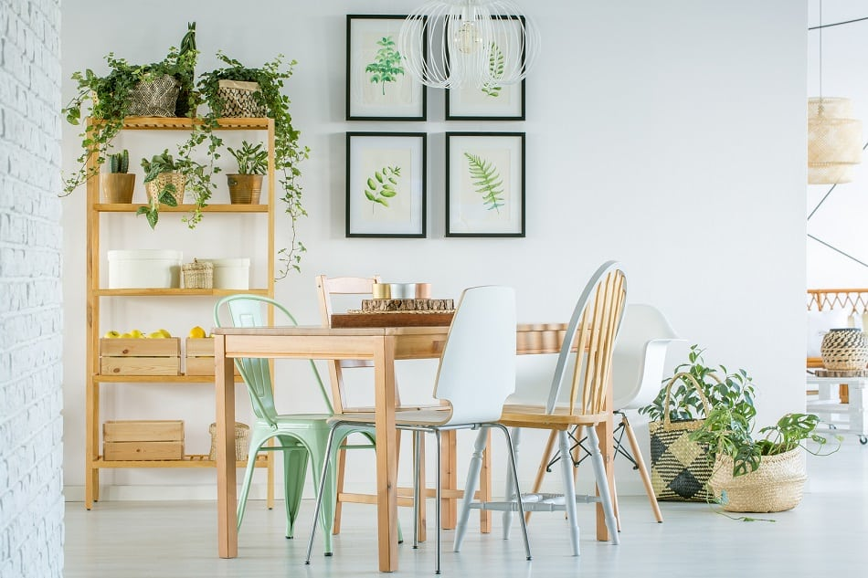 hygge home with plants