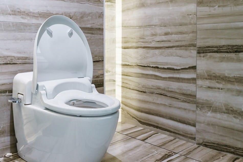 toilet flushing odor